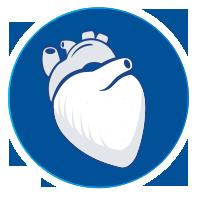 Steroids Heart
