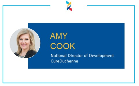 Amy Cook Blog